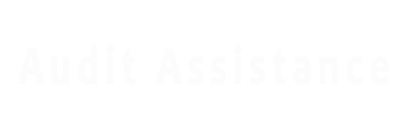 Audit-Assit-Square_2