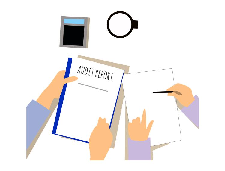 Audit-assist